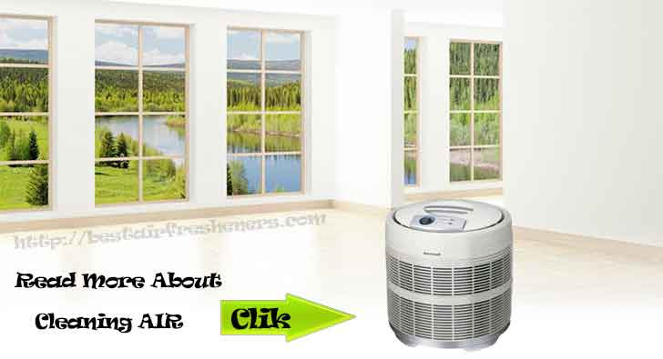 Do you need in your house air purifier best air fresheners for What is the best air freshener for your home